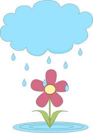 flower shower image