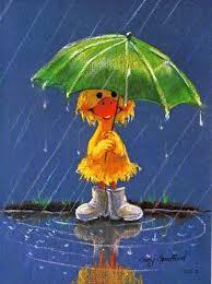 landgirl adjusts duck in rain