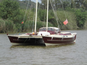 Tinto - another Tiki38
