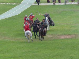 Horses in battle (photo Pat Pride)
